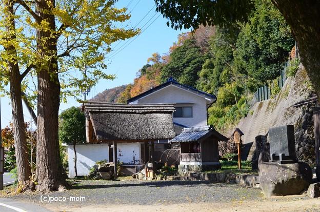 Photos: 菅浦集落 西の四足門 DSC_0733