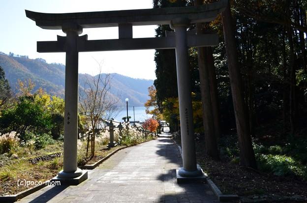 Photos: 須賀神社