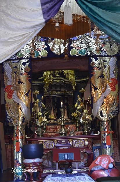 徳圓寺 DSC_0821