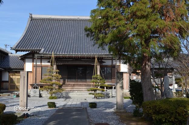 Photos: 和蔵堂 DSC_0829