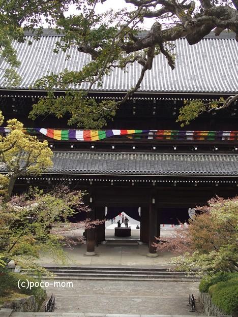 Photos: 男坂より三門を見下ろす P4140120