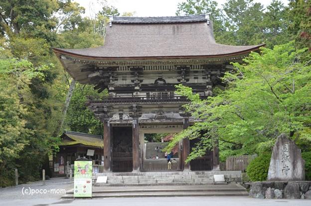三井寺山門
