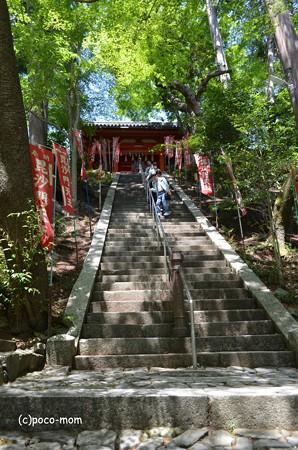 山科毘沙門堂 DSC_0234