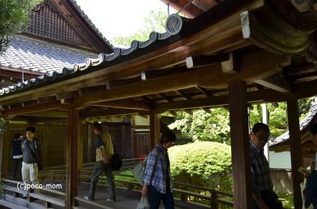 山科毘沙門堂 DSC_0248
