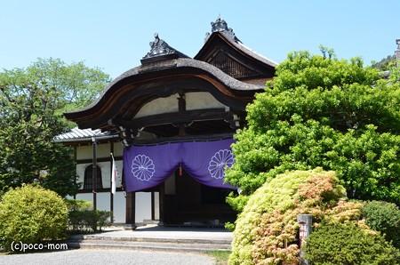 山科毘沙門堂 DSC_0271