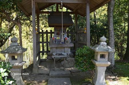 山科毘沙門堂 DSC_0281