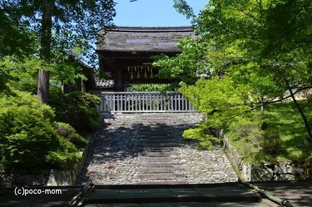 山科毘沙門堂 DSC_0292 (2)