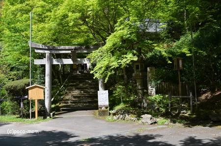 山科毘沙門堂 DSC_0298