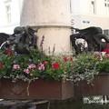 Photos: バーゼル マルクト広場 P1010142