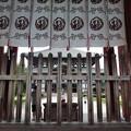 Photos: 東大寺