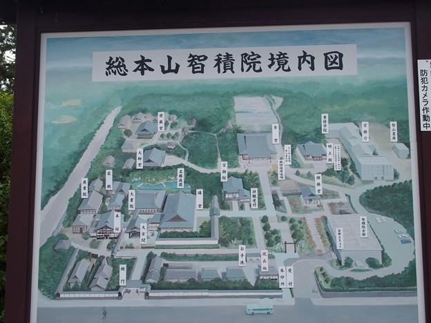 京都智積院