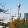 Photos: 大阪市立美術館からの眺めPC010071 (2)