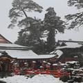 Photos: 太皷谷稲成神社