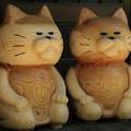 写真: 猫寺