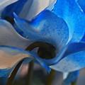 ブルーのファンタジー