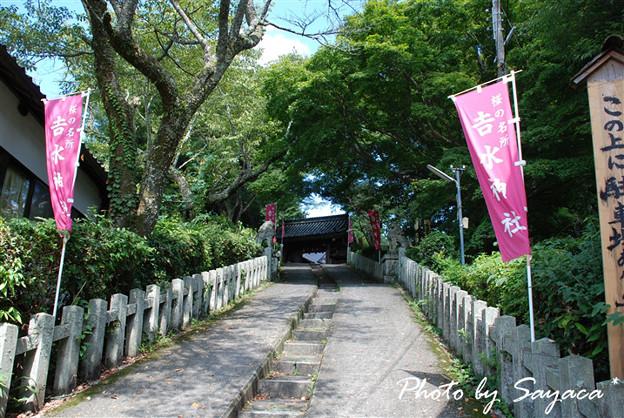 吉水神社01