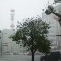 Photos: 激しい雨、九州電力に雷が落ちた!