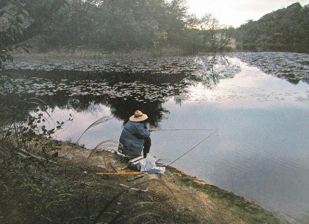 写真: ぶらり釣り行