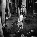 Photos: 墓地で生まれた子2
