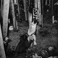 Photos: 墓地で生まれた子