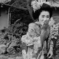 Photos: 昭和の記憶  恥じらい