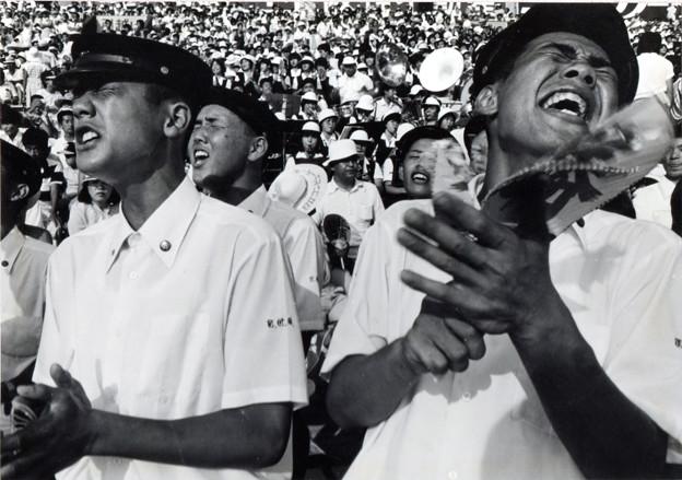 思い出甲子園 昭和56年第63回全国高校野球大会