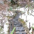 Photos: 大文字山階梯