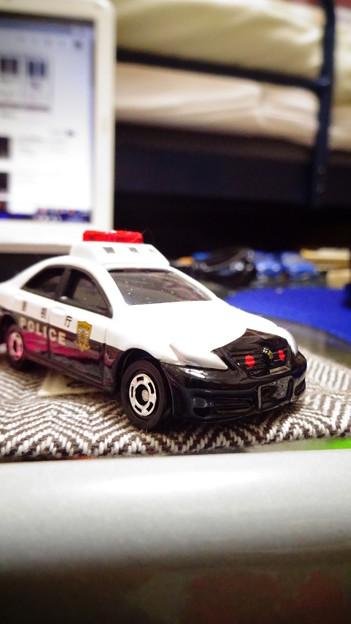 トミカ4Dクラウンパトカー