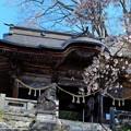 圓藏寺の春