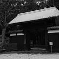 写真: 偕楽園 表門