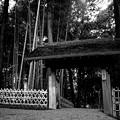 写真: 偕楽園 一の木戸
