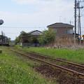 写真: 昼下がりの線路端
