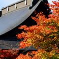写真: 紅葉と虚空蔵堂