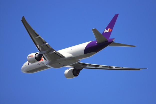 FedExの後姿