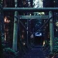 Photos: 青山神社