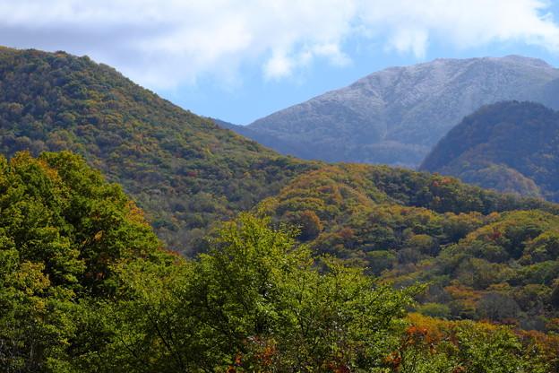 Photos: 秋から冬へ