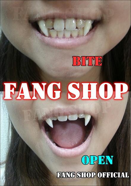 FANG SHOP 付け牙 N-2147