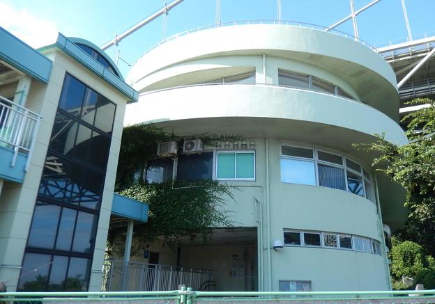 18-8-天草~熊本城0006