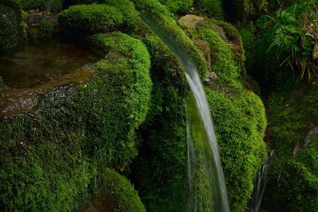 冷湖の霊泉