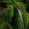 Photos: 冷湖の霊泉