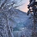 Photos: 寒 暮