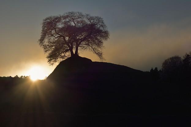 写真: 落 陽