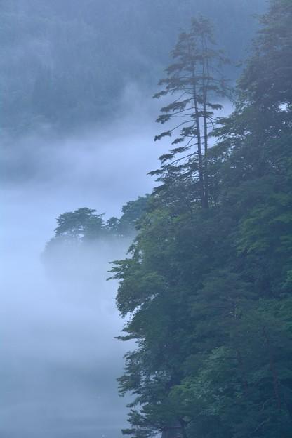 写真: 霧幻峡