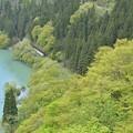 Photos: 新緑の候