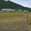 Photos: 刈田行ク