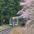 遅春一番列車