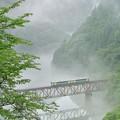 Photos: 峡谷渡ル