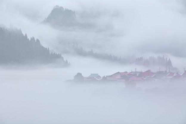立迷ふ夏岸の霧幻