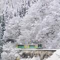 Photos: 驟雪ヲ行ク