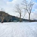 Photos: 春雪晴レル